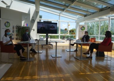Okrogla miza o institucionalnih vidikih vpeljave dobrih mentorskih praks – junij 2021